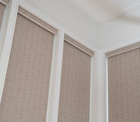 Bella View: Trademark Blackout Roller Shades