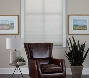 Bella View: Advantage Cordless Light Filtering Cellular Shade