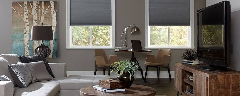 Bella View Legacy Blackout Cellular Shade