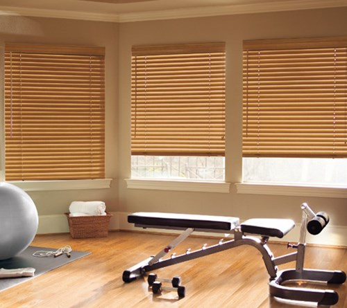 natural levolor ca shade blinds review roman filtering woven s lowe wood canada shades light